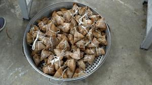 端午客家美食粽藝飄香
